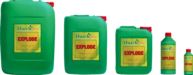 Products Dutch-pro